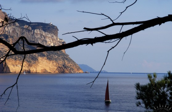 calanques cassis cap canaille 7