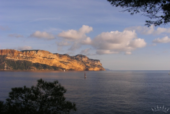calanques cassis cap canaille 8